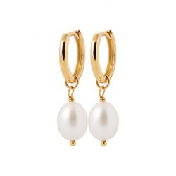 Créoles en plaqué or avec véritable perle d'eau douce Biwa pas chère obrillant-bijoux